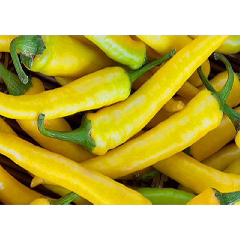 Pimiento 'Cayena Amarilla' - Sobre 20 semillas
