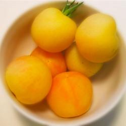 Tomate Garden Peach semillas