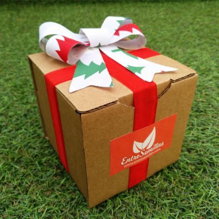 Caja Semillas de navidad regalo 10