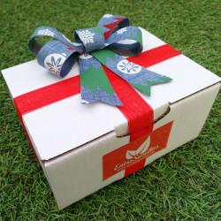 Semillas de Navidad regalo 40