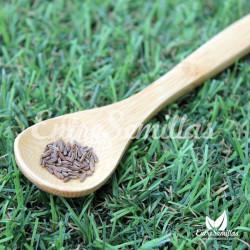 Alcaravea semillas Carum carvi