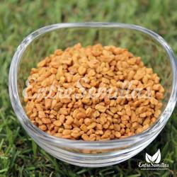 Alholva  semillas para sembrar
