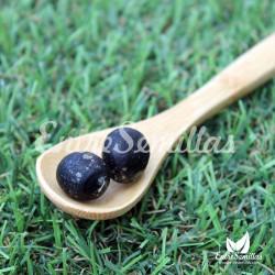 Árbol del Jabón semillas sapindus mukkorosii