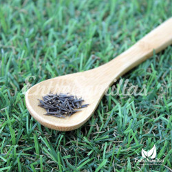 Arnica montana semillas
