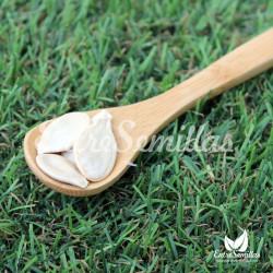 Calabaza Quintal semillas