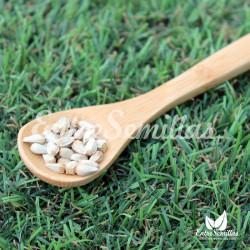 Cártamo semillas cathamus tinctorius