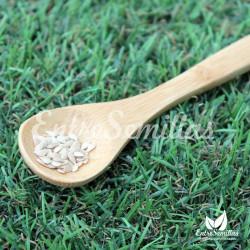 cucamelon semillas melothria scabra