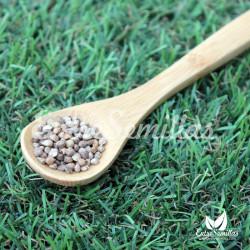 Espinaca Medania semillas