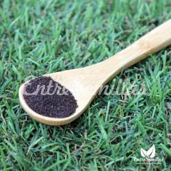 Hypericum perforatum semillas hierba san juan