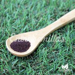 Hierbabuena semillas mentha spicata
