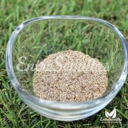Matricaria recutita semillas manzanilla castilla