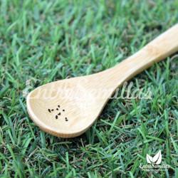 Ornithogalum dubium semillas