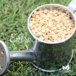 Pimiento 'Black olive' semillas
