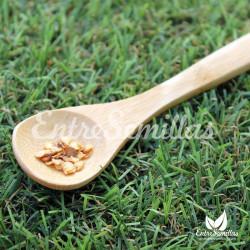 Pimiento Bhut Jolokia / Naga Jolokia semillas