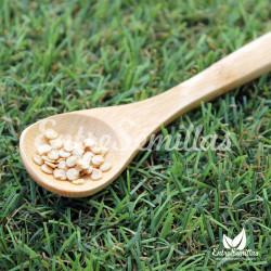 Pimiento Habanero Blanco - 20 semillas