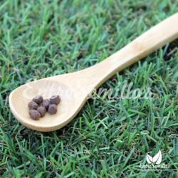 Plátano silvestre semillas