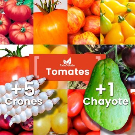Pack Tomates semillas
