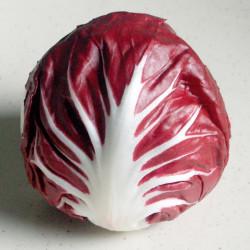 Achicoria roja de Treviso semillas