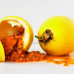 maracuya amarilla semillas