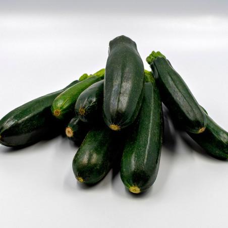 semillas de calabacin negro