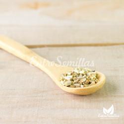 coneflower white seeds