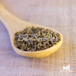 helenio huerto inula helenium