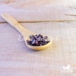 semillas de tamarillo