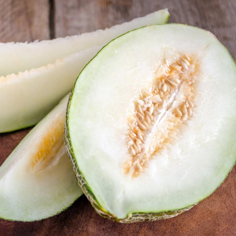 semillas de melon de sapo