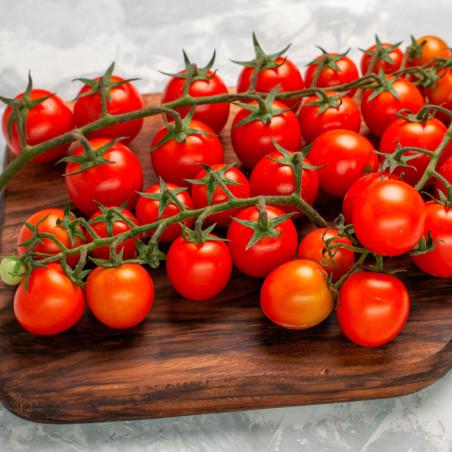 semillas de tomate cherry rojo