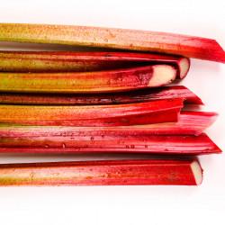 peciolos de ruibarbo