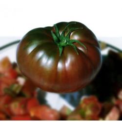 Tomate Negro de Tula - Sobre 25 semillas