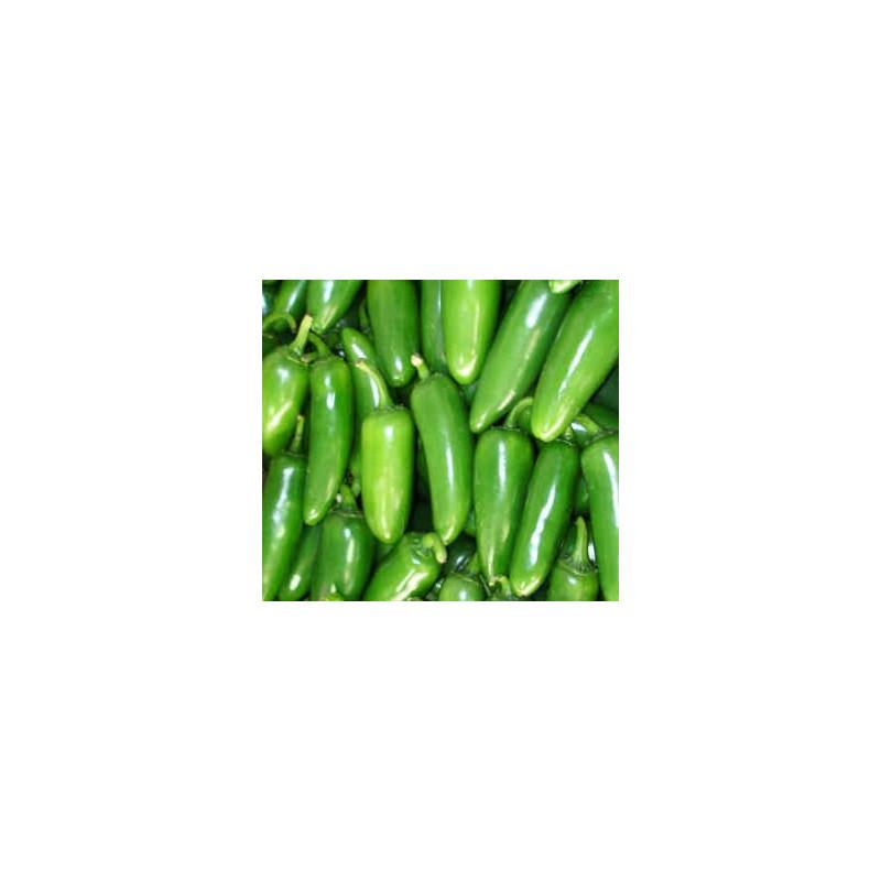 Pimiento Serrano Tampiqueño - Sobre 20 semillas