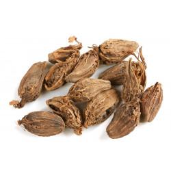 Cardamomo negro - Sobre 8 semillas