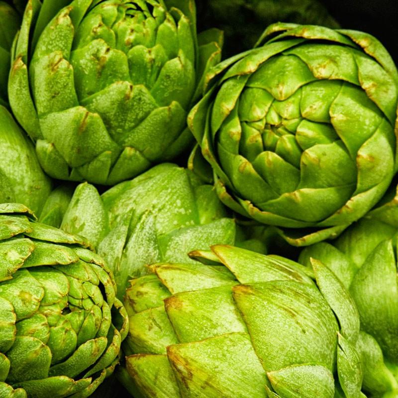 Alcachofa Verde Globo - Sobre 40 semillas