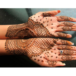 Henna - Sobre 50 semillas