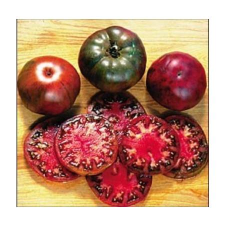 Tomate 'Black Krim'