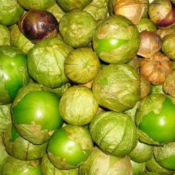 Tomatillo verde mexicano - Sobre 10 semillas