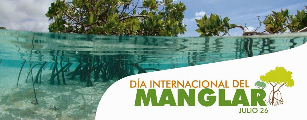 Dia de los manglares-03