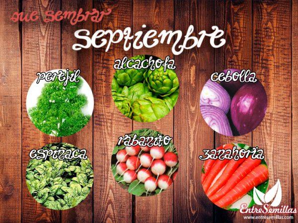 sembrar_septiembre