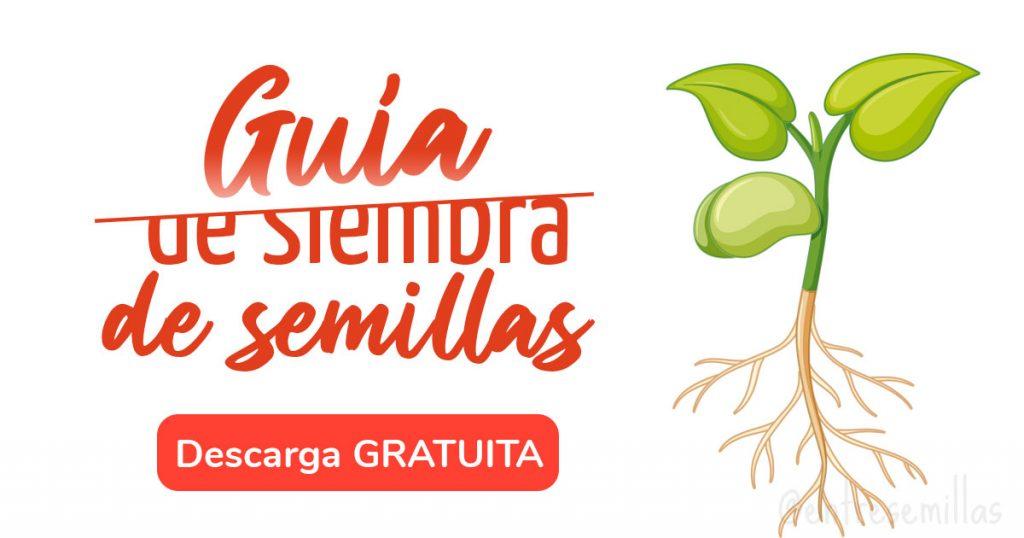 guia de siembra de semillas gratuita