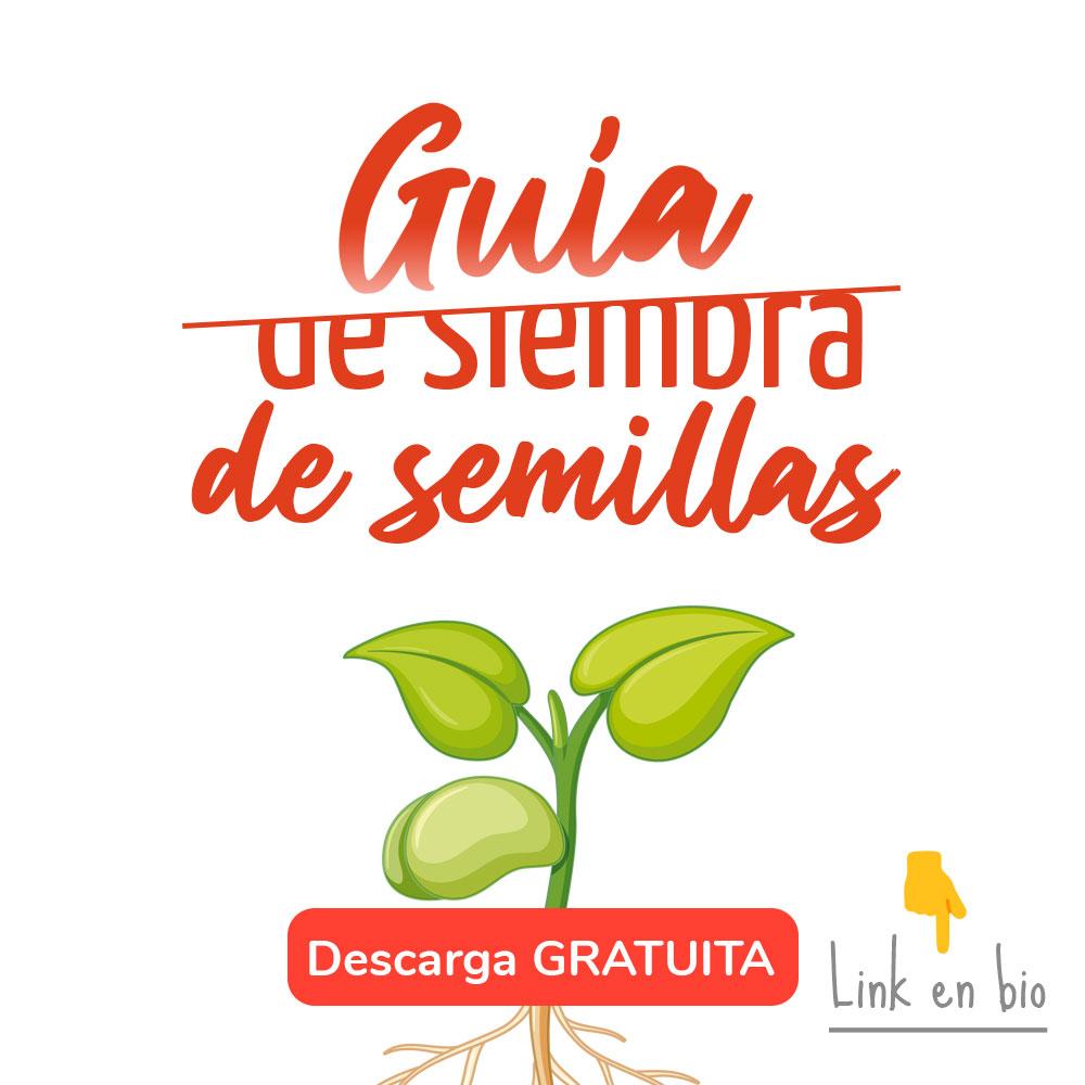 descargar guia siembra semillas gratis