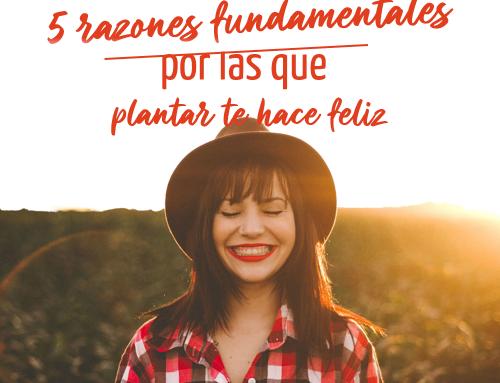 5 razones fundamentales por las que plantar te hace feliz