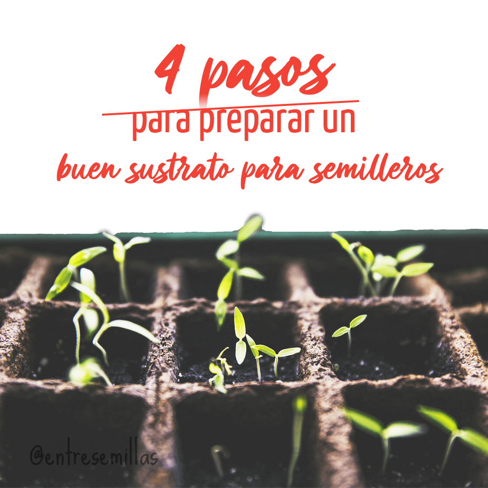 Pasos para preparar un buen sustrato para semilleros