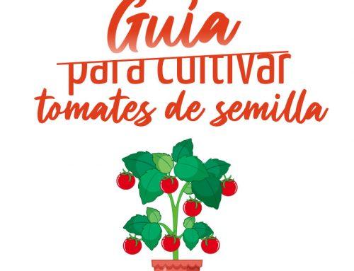 Guía para cultivar tomates desde semilla